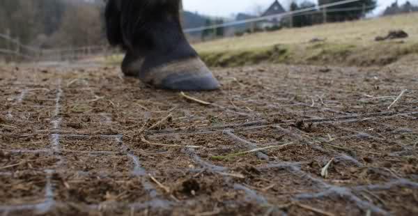 Erfahrungen mit paddockplatten auf gro er fl che forum for Boden heuraufe pferd