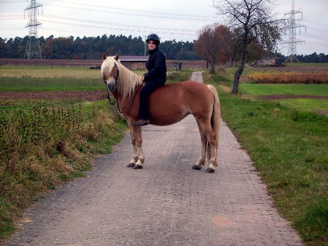 Pferd Reiten Ohne Sattel Reiten Ohne Sattel Auf Naddl